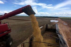 Conab aponta queda de 1,8% na safra total de grãos do Brasil em 2020/21